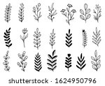 collection forest fern... | Shutterstock .eps vector #1624950796