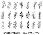 collection forest fern... | Shutterstock .eps vector #1624950799