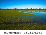 Flooded Meadow Linking Houghto...