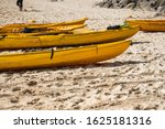 a row of colorful yellow kayaks ... | Shutterstock . vector #1625181316
