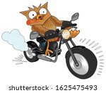 Owl Rides Very Fast On A Bike....