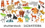 set of funny animals  birds and ... | Shutterstock . vector #1626455086