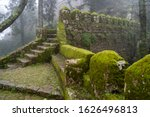 Moss Covered Old Steps And...