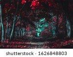 Stranger Forest. Mysterious...