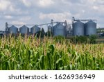 Silo In A Corn Field....