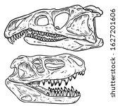carnivore dinosars skulls line...   Shutterstock .eps vector #1627201606