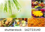 colors of autumn | Shutterstock . vector #162723140