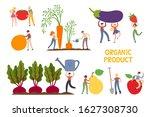 organic production cartoon... | Shutterstock .eps vector #1627308730