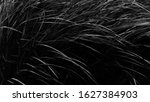 a combination of lines in black ... | Shutterstock . vector #1627384903