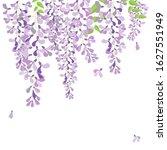 Vector Wisteria Purple Flower...