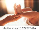 Baby Feet In Mother Hands. Tiny ...