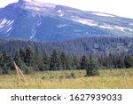 Landscape Of Alaska Mountain...