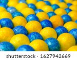 Many Of Bright Blue And Yellow...
