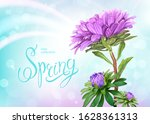 beautiful floral background... | Shutterstock .eps vector #1628361313
