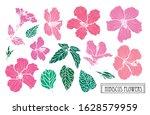 decorative hand drawn hibiscus...   Shutterstock .eps vector #1628579959