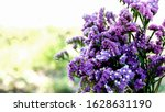 Picture Of Purple Flowers On A...