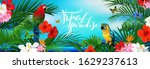 beautiful tropical banner with...   Shutterstock .eps vector #1629237613