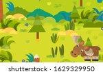 cartoon forest scene with wild... | Shutterstock . vector #1629329950