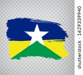 flag of  rondonia from brush...