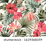 seamless pattern exotic... | Shutterstock . vector #1629368359