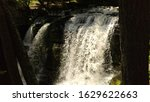 water falls and fauna down... | Shutterstock . vector #1629622663