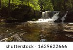 water falls and fauna down... | Shutterstock . vector #1629622666