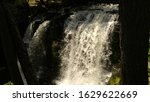 water falls and fauna down... | Shutterstock . vector #1629622669