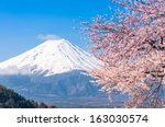 mt fuji and cherry blossom at... | Shutterstock . vector #163030574