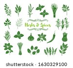 herbs and spices glyph icons.... | Shutterstock .eps vector #1630329100