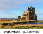 Whitby Abbey North Yorkshire Uk