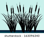 Reeds Silhouettes