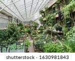Beautiful Greenhouse...