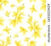 Forsythia Yellow Flowers On...