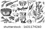 mustard seeds and plant set.... | Shutterstock .eps vector #1631174260