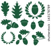 oak and acorns. abstract oak on ... | Shutterstock .eps vector #163178789