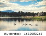 Small photo of Geese on Dowdy Lake, Colorado