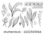 lily of the vally. hand drawn... | Shutterstock .eps vector #1632565066