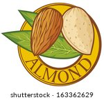 almond nut with leaves label ... | Shutterstock .eps vector #163362629