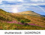 mountain landscape. valley with stones on the hillside. forest on the mountain under the beam of light falls on a clearing at the top of the hill. - stock photo