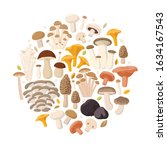 Mushrooms Collection Of Vector...