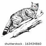 wild cat | Shutterstock . vector #163434860
