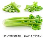 Celery stalk isolated. celery...
