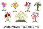 forest flowers garden. spring... | Shutterstock .eps vector #1635017749