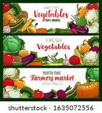 vegetables  organic farm food... | Shutterstock .eps vector #1635072556
