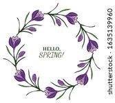 Purple Crocuses. Delicate...