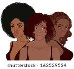 vector illustration of black...   Shutterstock .eps vector #163529534