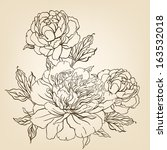 peony  vintage hand drawing... | Shutterstock .eps vector #163532018
