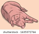 dead pig illustration   vector | Shutterstock .eps vector #1635372766