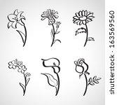 arte,mayordomo,calla,manzanilla,manzanilla,colección,aciano,margarita,dibujo,dibujado,floral,flor,mano,aciano,icono