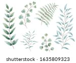 set of watercolor botanical... | Shutterstock .eps vector #1635809323